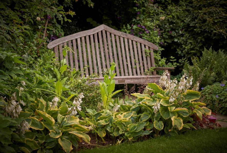 The Bute Memorial bench