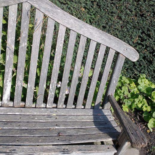 SJL-bench-top