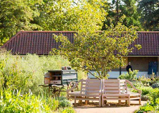 Hampton Court Kitchen Gardens