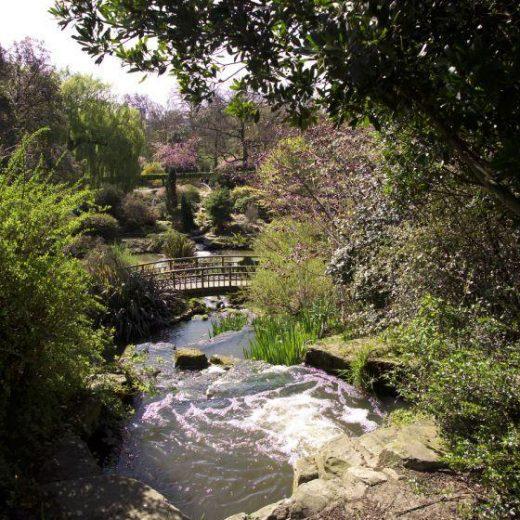 Regents Park pathway in London