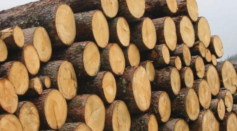 Environmental Wood